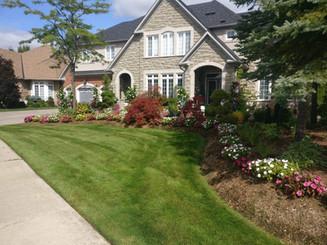 Residential lawn cutting