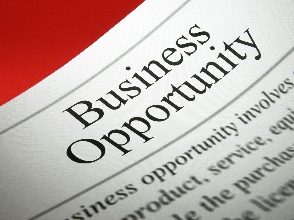 Business Opportunity Laws