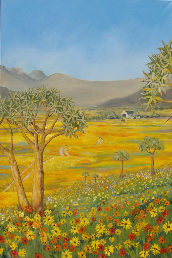 Namaqualand B