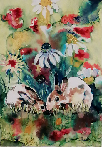 Rabbits A
