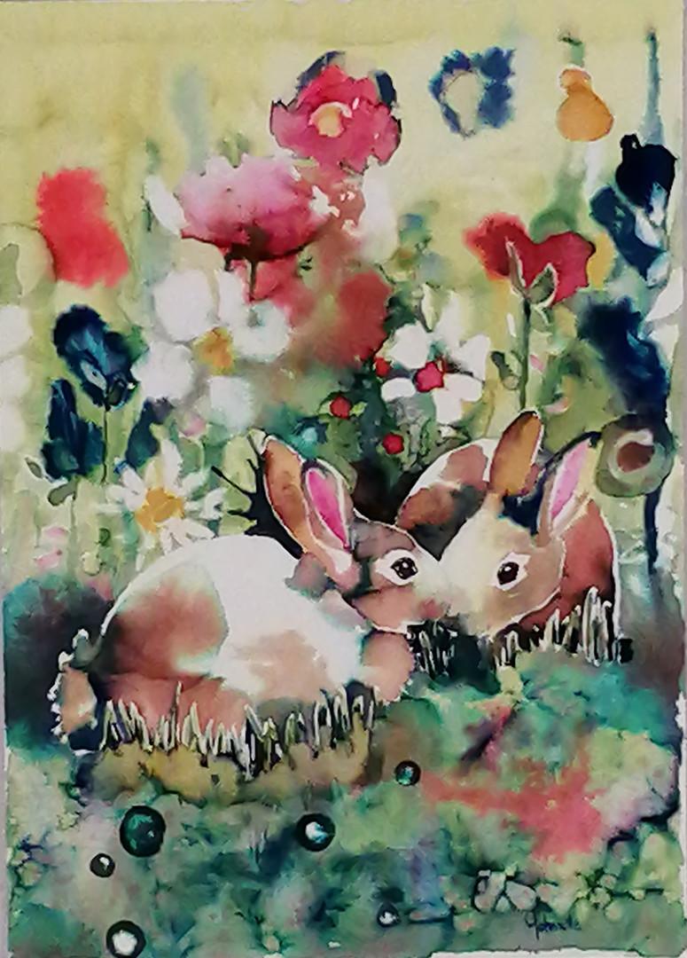 Rabbits B