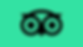 tripadvisor_logo_icon_detail.png