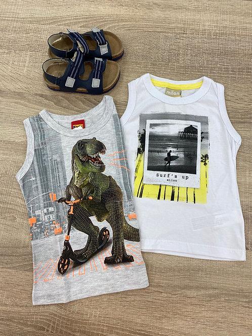 Camisetas sisa dino/surf (109721/11780)
