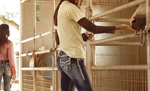 Rock Revival Women's Jeans in Barn