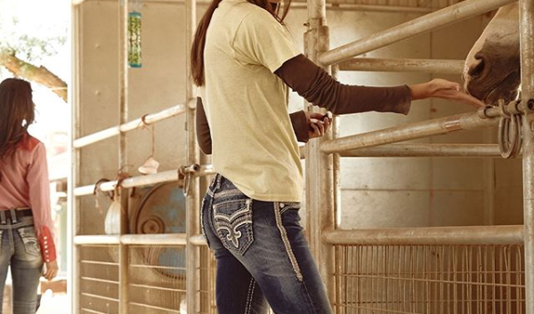 Rock Revival Women's Jeans in Barn