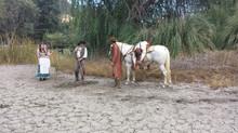 Horses in True Nightmares TV Show (Discovery ID), Santa Clarita, CA