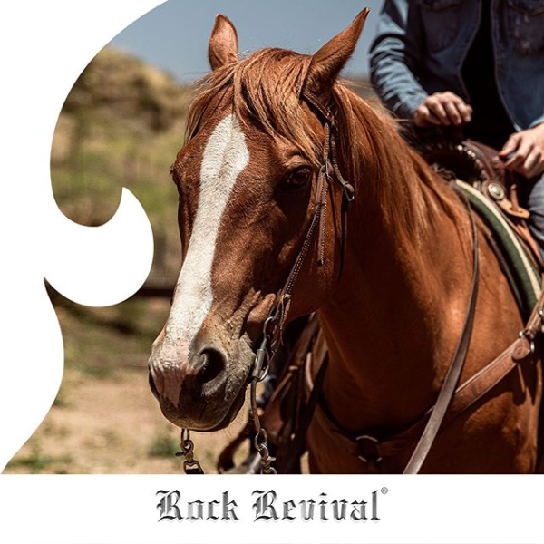 Rock Revival Traveler