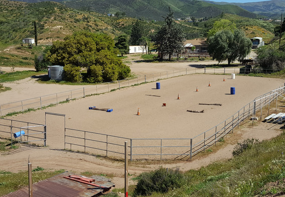 Large Horse Arena