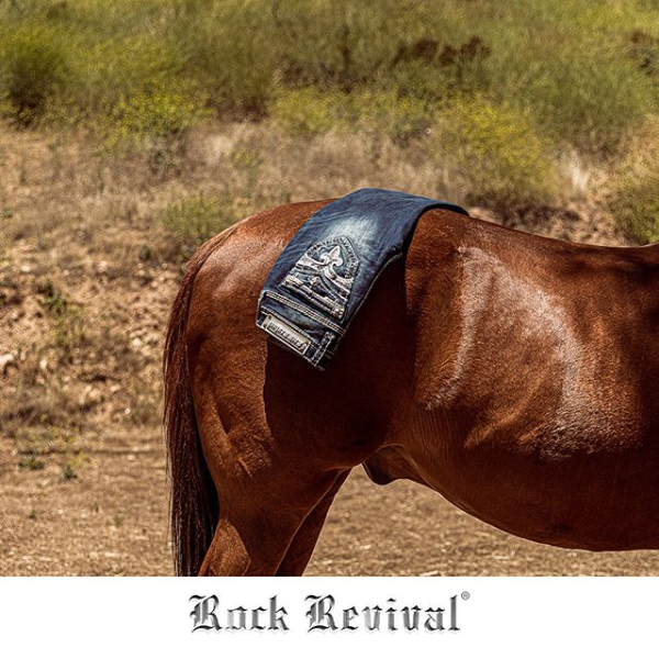 Rock Revival Jean Display on Horse