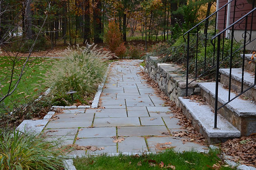 Stone walkway with plantings