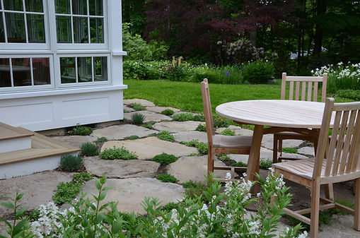 Stone patio with steppable plants-Rue-Sherwood-Landscape-Design