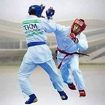 combat ju jitsu.jpg