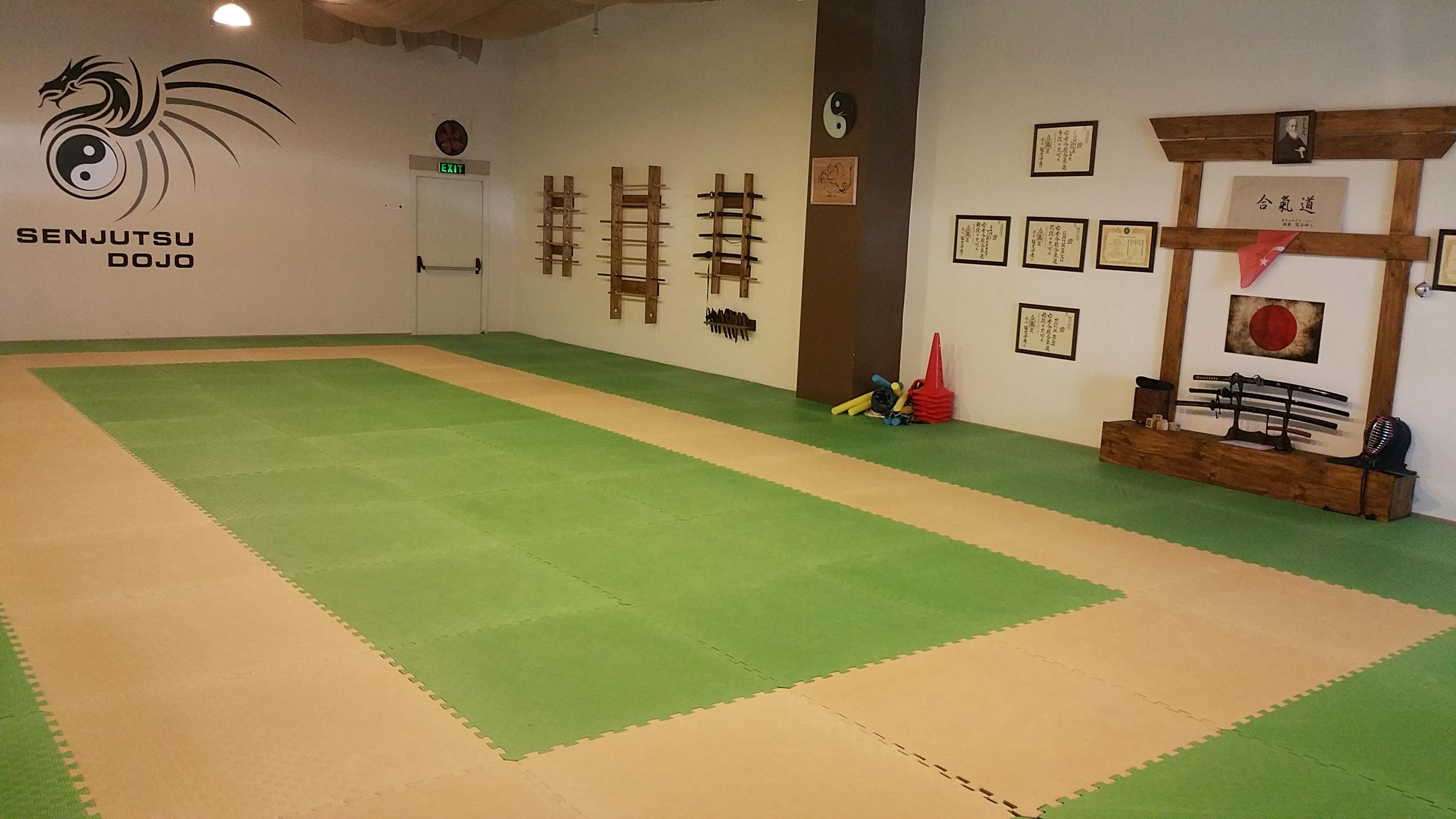 aikido dojo2