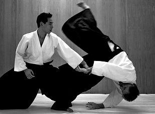 Aikido-Image-Source-Siamstarmma.jpg