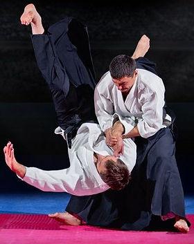 aikido-800x574.jpg