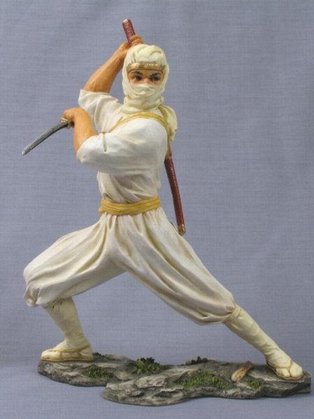 Ninja Biblo
