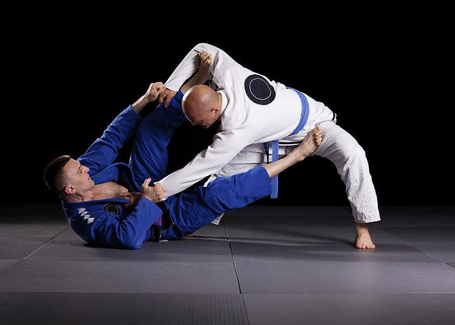 Damri-MMA.jpg