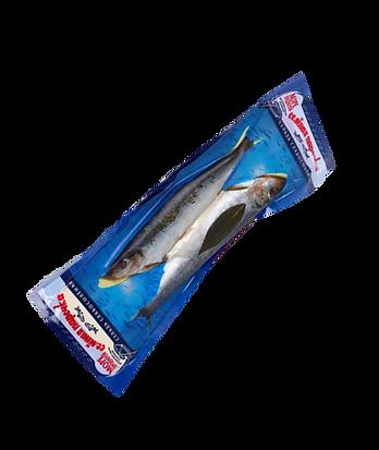 balıklar.png