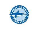 Mote Marine Exploration