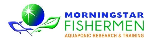Morningstar Fisherman