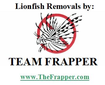 Team Frapper