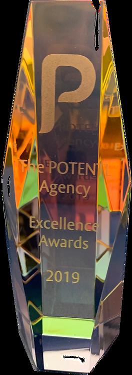 Excellence Award entry
