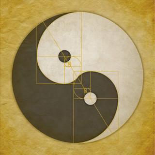 Phi Yin Yang II.jpg