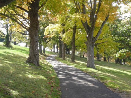 RFP: Olmsted In Connecticut Landscape Documentation Project