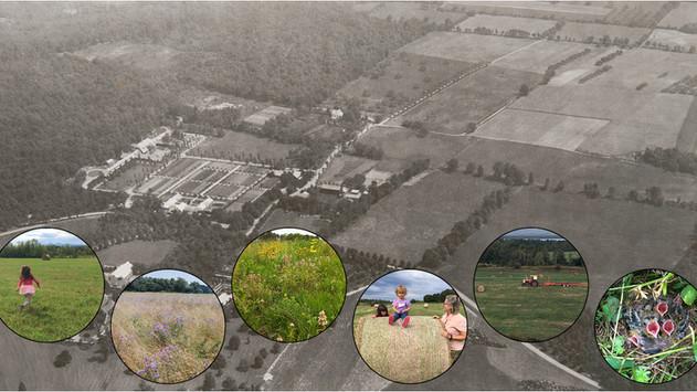 Planting Fields Cultural Landscape Report