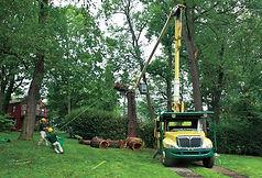 Bartlett Arborist.jpg