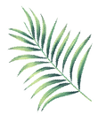 leaf02.png