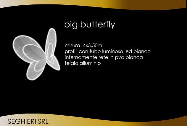 BUTTERFLY BIG.jpg