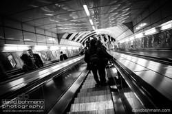 london_david_bohmann111