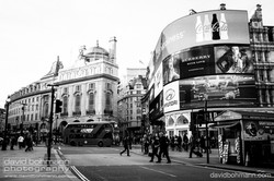 london_david_bohmann30