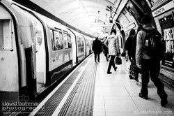 london_david_bohmann36