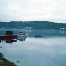 Boyd's Cove