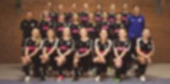 Mannschaftsfoto_C-Mädchen.jpg
