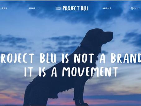 CASE STUDY - Project Blu