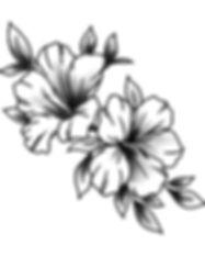 bountiful-beauty_lifestyle_1_20200614055