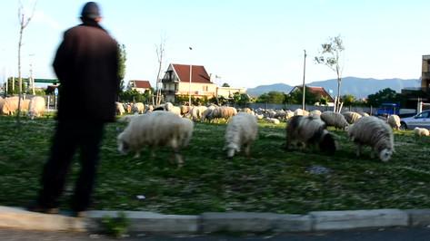 Bosnien ist ein sehr armes Land. Das durchscnittliche Einkommen pro Kopf liegt bei 372 Euro.