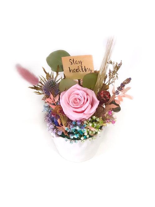 Pink Rose in White Pot