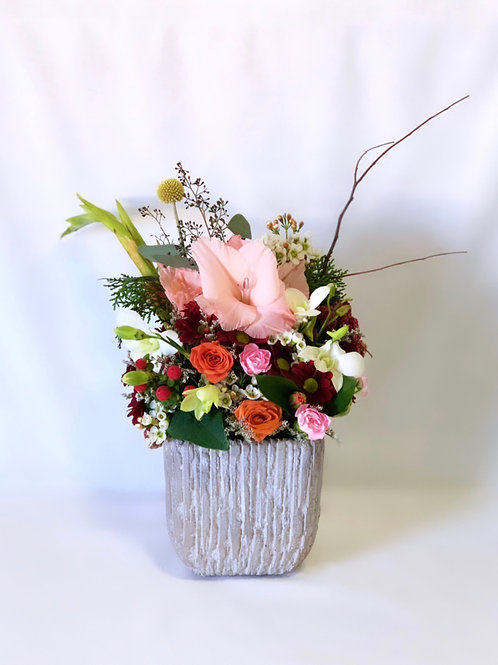 Blush Gladiolus in Cream Cement Vase