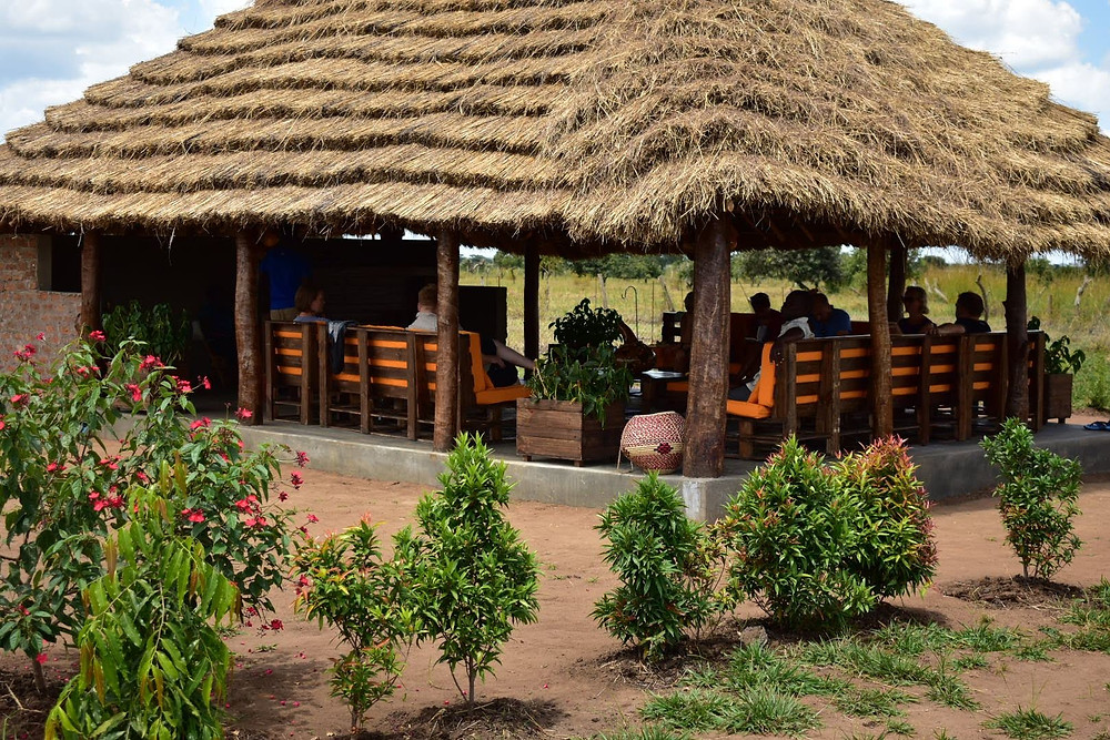 Grass thatch, uganda, kapelebyong, napak, karamoja, teso, village, building style