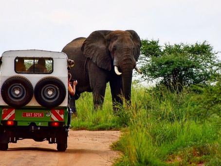 Sommerens tur til Uganda avlyst