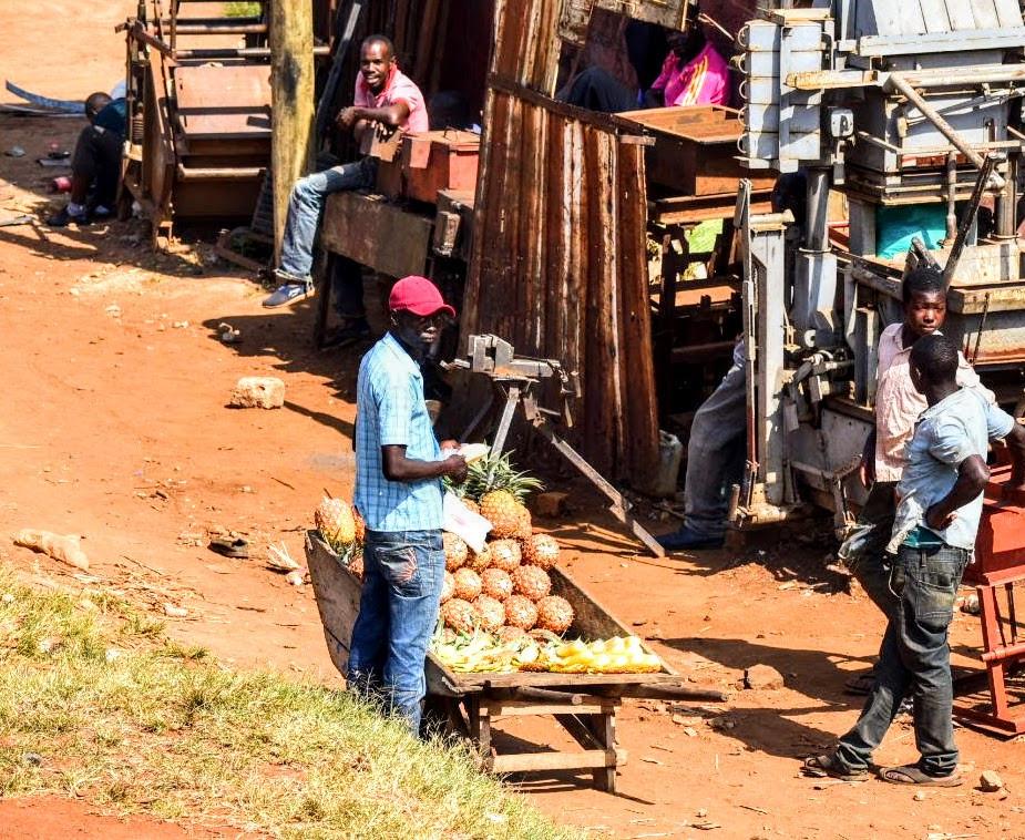pineapple, ananas, uganda, kampala