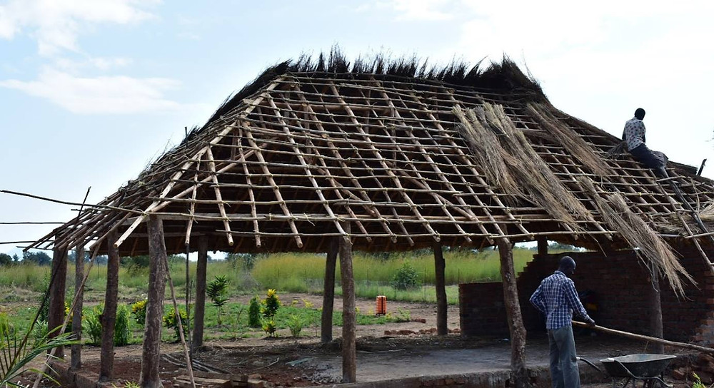 Grass thatched house, thatching, uganda, kapelebyong, okra farm, karamoja, teso, napak