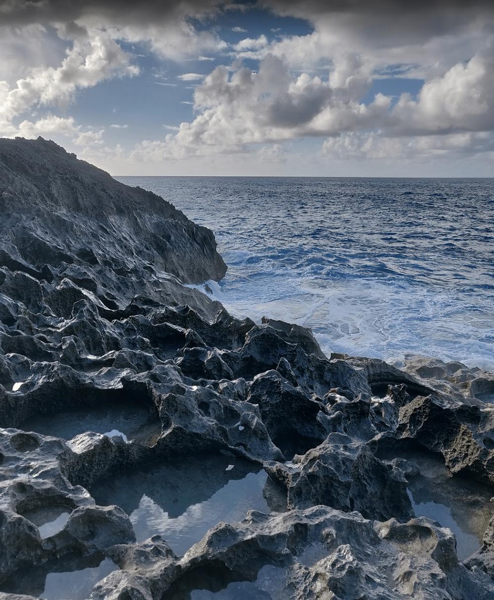 Falaise calcaire de Guadeloupe