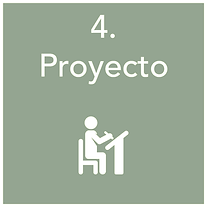 Roll_Proyecto1 panton nuevo.png