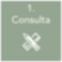 Roll_Consulta1 panton nuevo.png