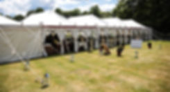 wedding package, marquee hire, marquee rent, wedding marquee, event, sussex, brighton, wedding, tent, festival, summer marquee, wedding space, marque, weddin, wed